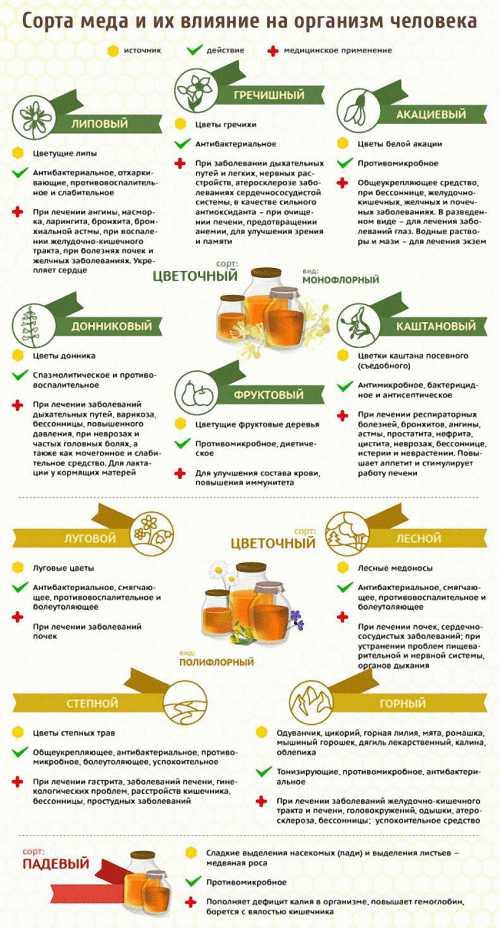 кунжут: полезные свойства витаминов, микроэлементов и фитоэстрогенов